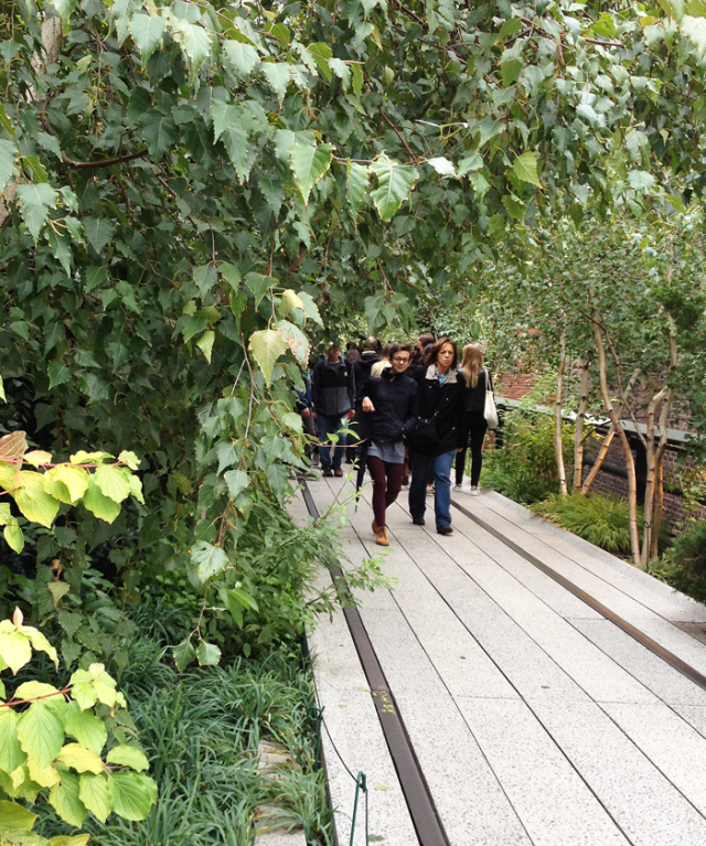New York City's Highline Park